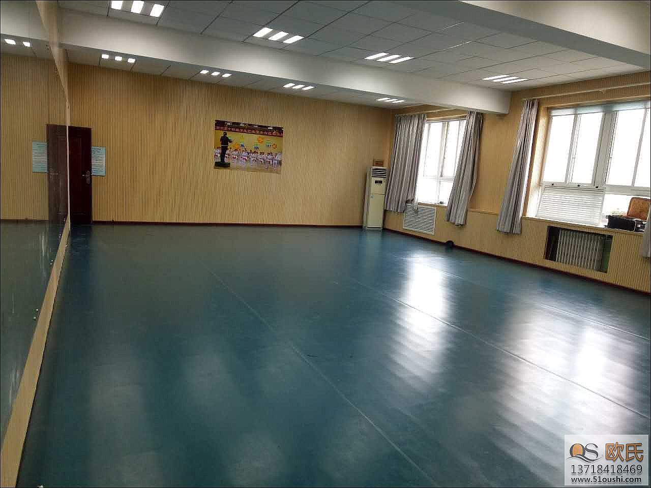 北京舞蹈室地胶案例--丰台区草桥小学小学寒假作文200字图片